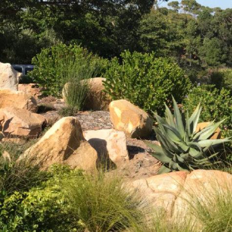 Natural-mountain-side-garden-4