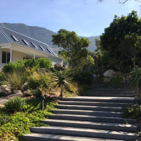 Natural-mountain-side-garden